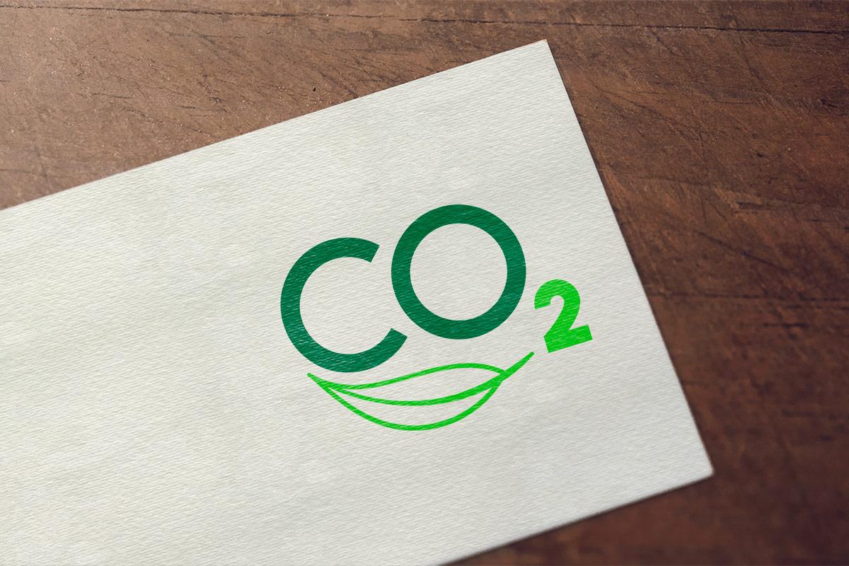Realizzazione e sviluppo logo CO2
